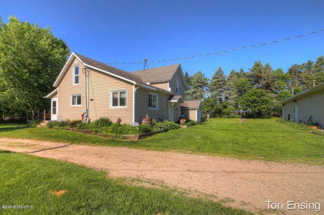 426 Plumb Road SW, Stanton, MI 48888 (MLS #18054361) :: Matt Mulder Home Selling Team