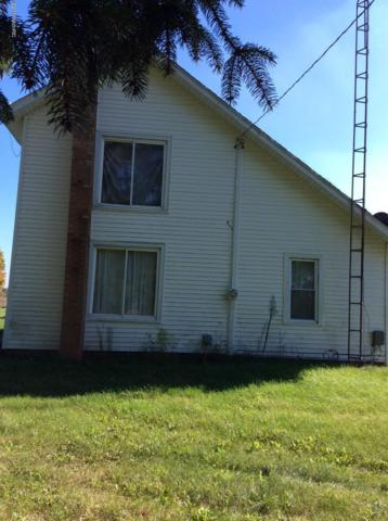 1044 24 Mile Road, Homer, MI 49245 (MLS #18054815) :: JH Realty Partners