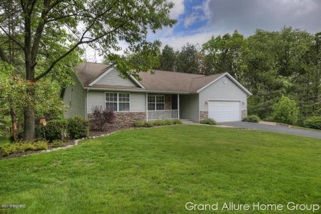 14129 Natures Ct Place Court SE, Lowell, MI 49331 (MLS #18055047) :: JH Realty Partners
