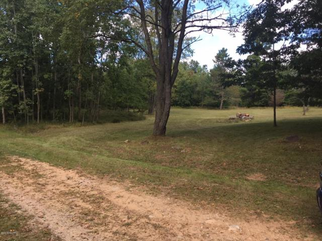 Lot 2&48 Riverbend Road, Evart, MI 49631 (MLS #18055331) :: Matt Mulder Home Selling Team