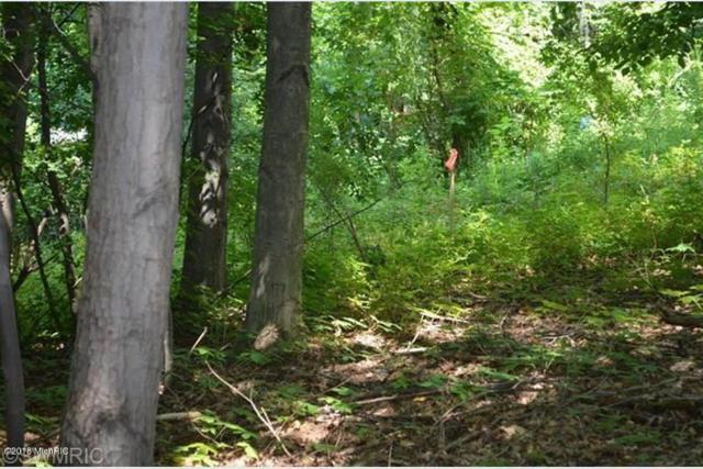 Hideaway Lane, Vandalia, MI 49095 (MLS #18055729) :: Deb Stevenson Group - Greenridge Realty