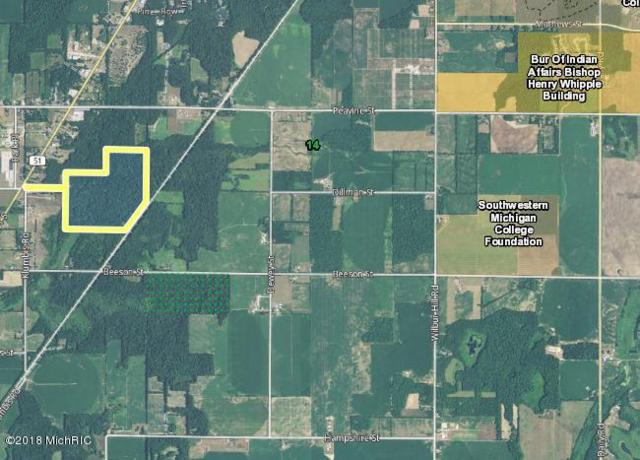 M-51, Dowagiac, MI 49047 (MLS #18055762) :: Deb Stevenson Group - Greenridge Realty