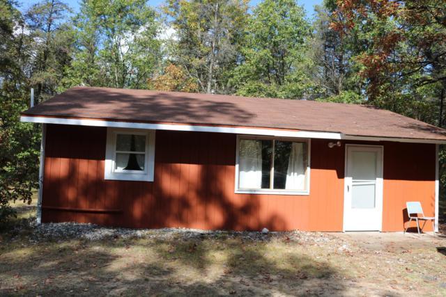4838 E Stark Road, Free Soil, MI 49411 (MLS #18055871) :: Matt Mulder Home Selling Team