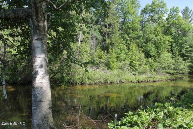 A Johnson Road, Greenville, MI 48838 (MLS #18055933) :: Deb Stevenson Group - Greenridge Realty