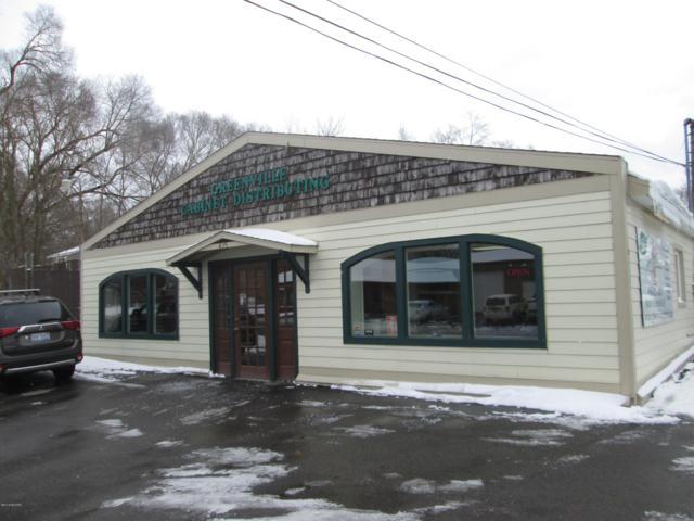 425 E Fairplains Street, Greenville, MI 48838 (MLS #18056374) :: JH Realty Partners