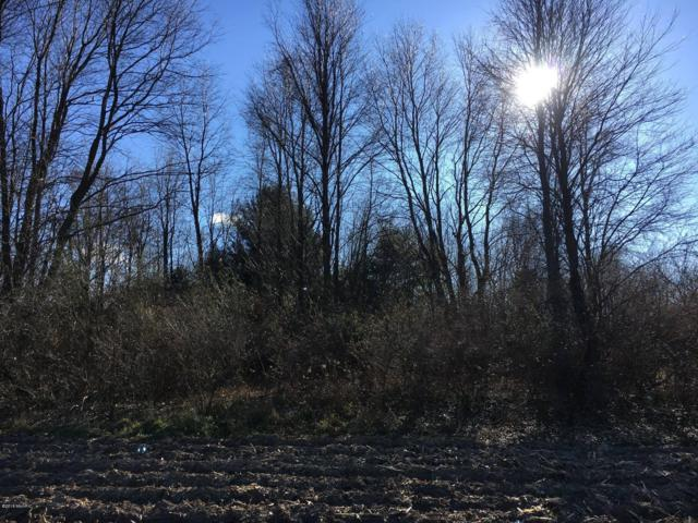 125-Lot 32 W Adams Road, Hart, MI 49420 (MLS #18056492) :: JH Realty Partners