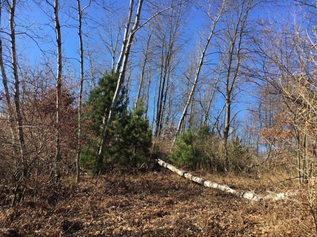 125-Lot 32 W Adams Road, Hart, MI 49420 (MLS #18056497) :: JH Realty Partners