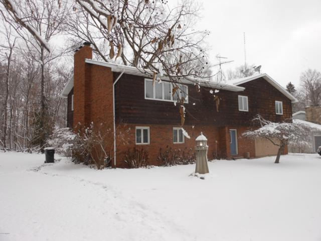 8846 Maplewood Drive, Berrien Springs, MI 49103 (MLS #18056634) :: JH Realty Partners