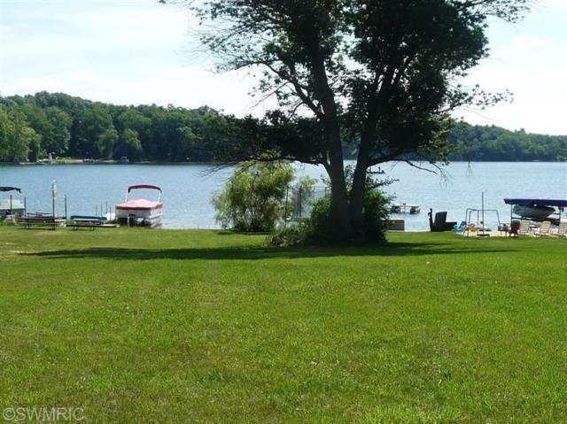 11209 Elizabeth Drive, Three Rivers, MI 49093 (MLS #18056995) :: Matt Mulder Home Selling Team