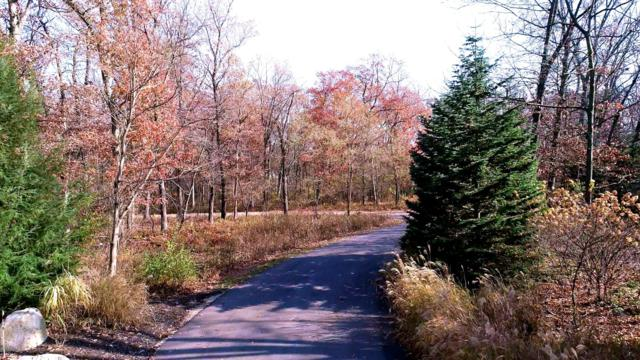 0 Fairway Drive #35, New Buffalo, MI 49117 (MLS #18057610) :: Deb Stevenson Group - Greenridge Realty
