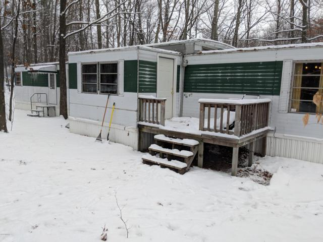 97 W Ridge Circle Circle, Leroy, MI 49655 (MLS #18057641) :: Deb Stevenson Group - Greenridge Realty