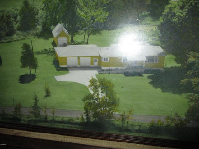 10025 Staines Road, Fenwick, MI 48834 (MLS #18057698) :: Deb Stevenson Group - Greenridge Realty