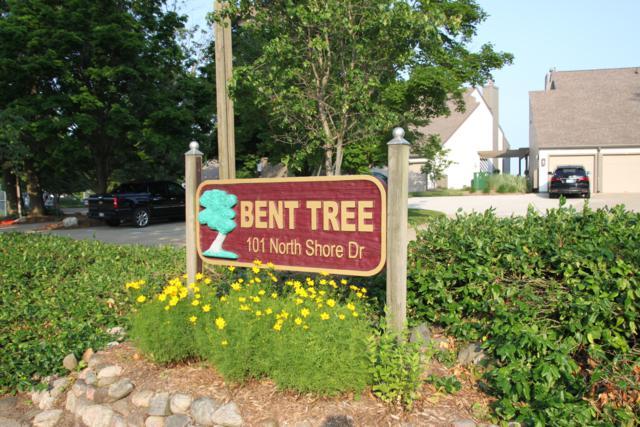 101 N Shore Drive #11, South Haven, MI 49090 (MLS #18057854) :: Deb Stevenson Group - Greenridge Realty