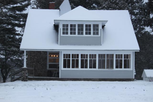 9611 210th Avenue, Reed City, MI 49677 (MLS #18057999) :: Matt Mulder Home Selling Team