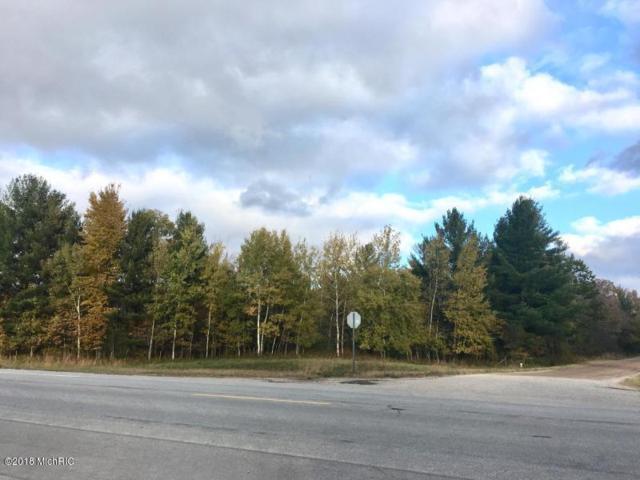 A Millerton, Scottville, MI 49454 (MLS #18058320) :: Deb Stevenson Group - Greenridge Realty