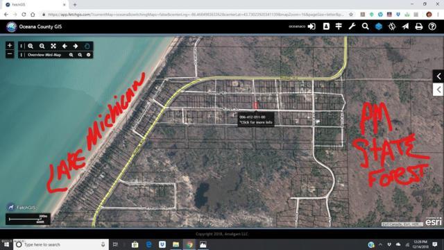 Lot 11 Blk 12 Elm Street, Mears, MI 49436 (MLS #18058339) :: Matt Mulder Home Selling Team