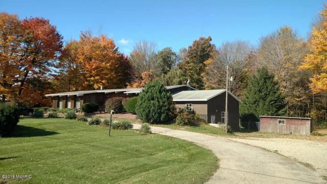 9270 M-46 Road, Lakeview, MI 48850 (MLS #18058627) :: Matt Mulder Home Selling Team