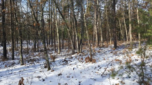 00 River Ranch Drive, Irons, MI 49644 (MLS #18058665) :: JH Realty Partners
