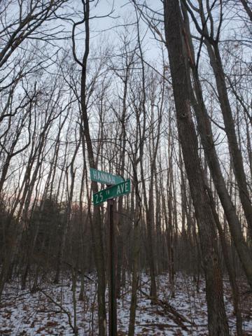 Hannah Road, Remus, MI 49340 (MLS #18058858) :: CENTURY 21 C. Howard