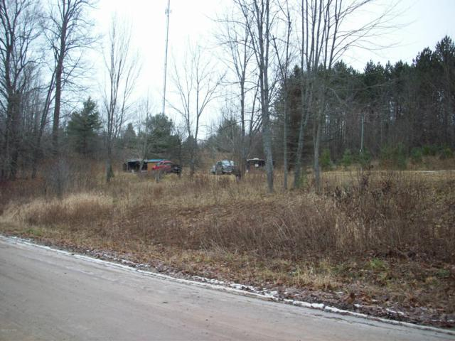 10214 190th, Reed City, MI 49677 (MLS #18059219) :: Deb Stevenson Group - Greenridge Realty