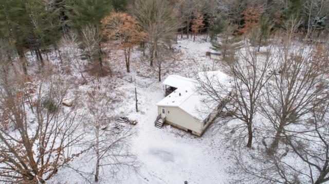 814 S Deer Lake Road, Reed City, MI 49677 (MLS #18059454) :: Matt Mulder Home Selling Team