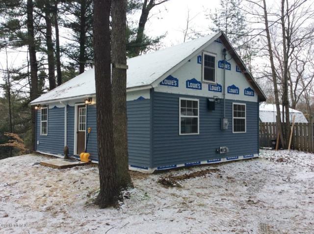 9254 E New River Drive, Howard City, MI 49329 (MLS #18059456) :: Matt Mulder Home Selling Team
