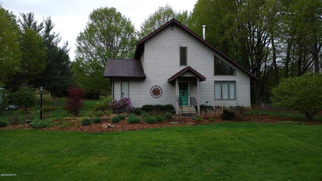 31481 1st Avenue, Gobles, MI 49055 (MLS #19000163) :: Matt Mulder Home Selling Team