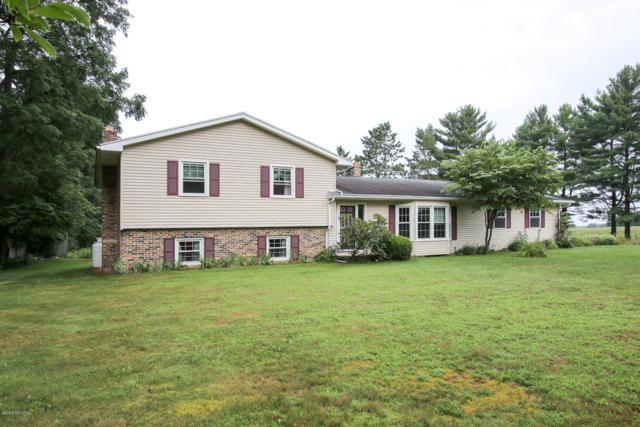 5289 N 36th Street, Richland, MI 49083 (MLS #19000185) :: Matt Mulder Home Selling Team