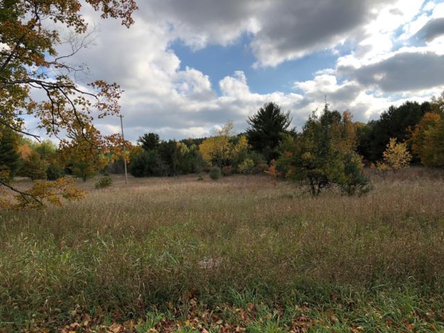 13.02 Acres Potter Road, Bear Lake, MI 49614 (MLS #19000190) :: CENTURY 21 C. Howard