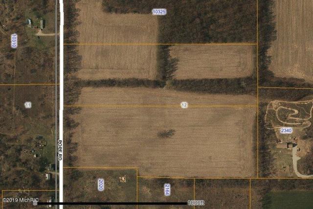 0 Pope (12.5) Road, Jonesville, MI 49250 (MLS #19000195) :: Deb Stevenson Group - Greenridge Realty