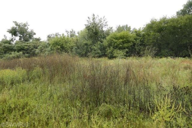 Lot #8 Hidden Ponds Drive, Martin, MI 49070 (MLS #19000348) :: JH Realty Partners