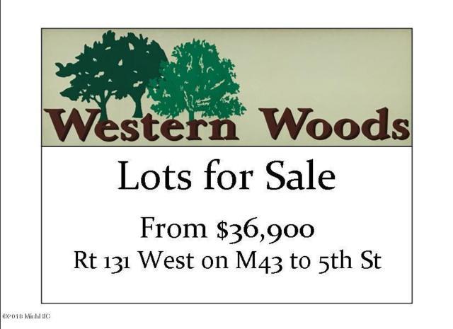 852 Doolittle Court, Kalamazoo, MI 49009 (MLS #19000399) :: Matt Mulder Home Selling Team