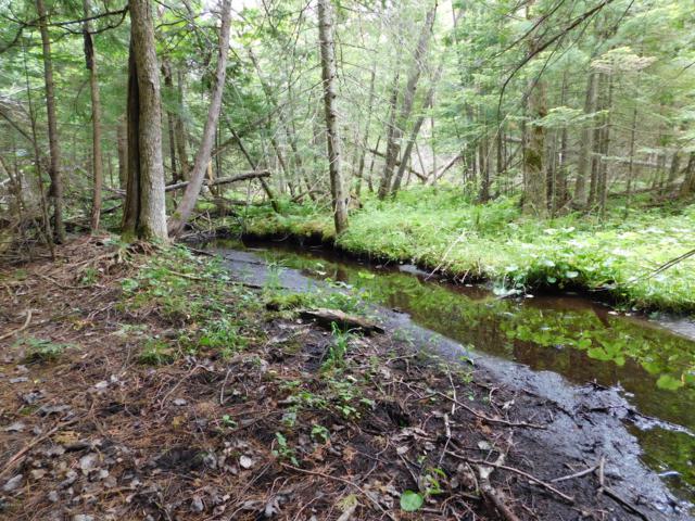 10322-102 Acres SW M-33, Fife Lake, MI 49633 (MLS #19000433) :: Deb Stevenson Group - Greenridge Realty