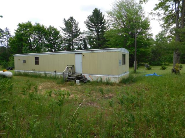 10322 SW M-66, Fife Lake, MI 49633 (MLS #19000436) :: JH Realty Partners