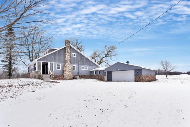 3160 N 176th Avenue, Walkerville, MI 49459 (MLS #19000441) :: Matt Mulder Home Selling Team