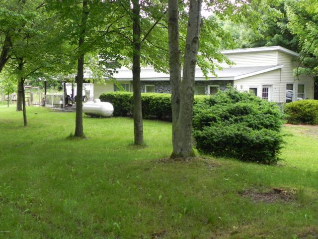 63656 Walnut Road, Vandalia, MI 49095 (MLS #19000733) :: Matt Mulder Home Selling Team