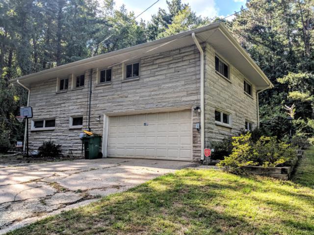 20301 Capital Avenue NE, Battle Creek, MI 49017 (MLS #19000837) :: Matt Mulder Home Selling Team