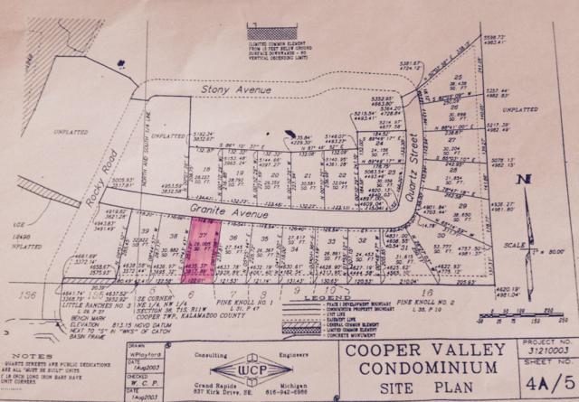 4216 Granite Avenue, Kalamazoo, MI 49004 (MLS #19000846) :: Matt Mulder Home Selling Team