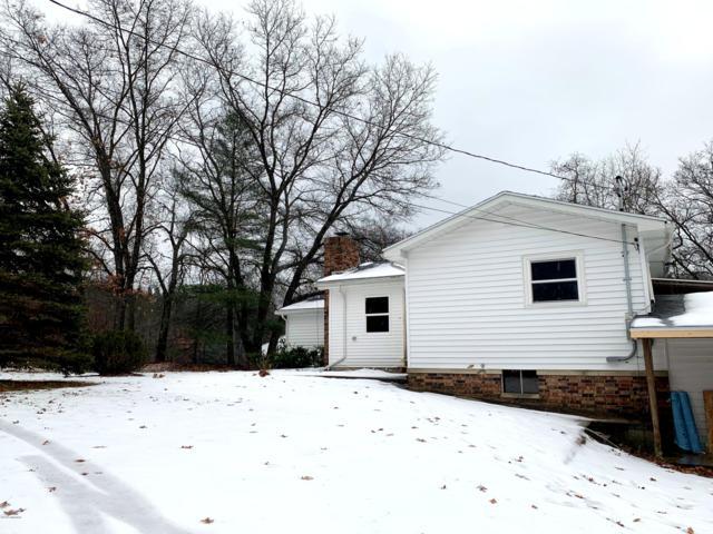 4165 Skeels Road, Holton, MI 49425 (MLS #19000847) :: Matt Mulder Home Selling Team