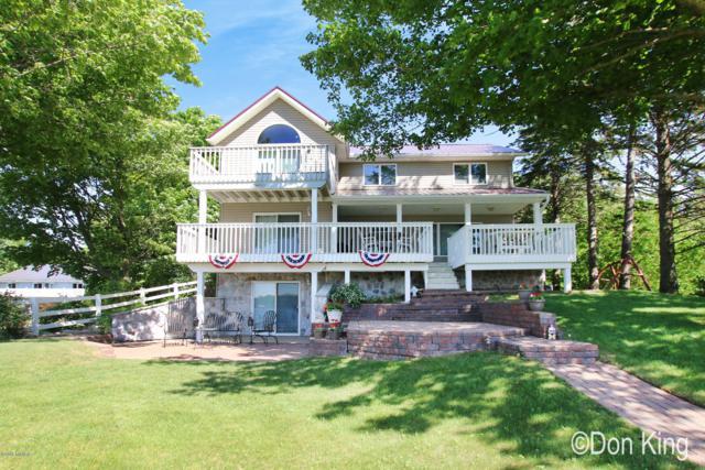 3018 W Runyan Drive, Lake Odessa, MI 48849 (MLS #19000864) :: Deb Stevenson Group - Greenridge Realty