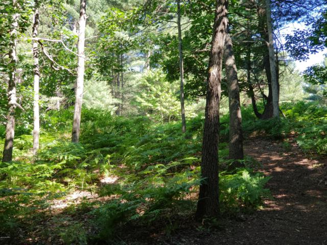 Comanche Pass, Branch, MI 49402 (MLS #19000983) :: JH Realty Partners