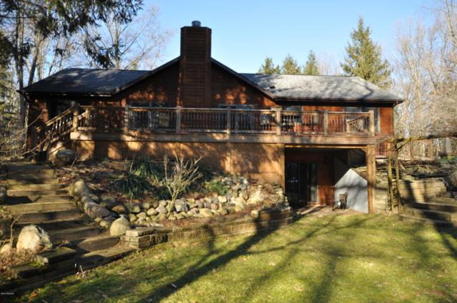 17959 8th Street, Gobles, MI 49055 (MLS #19001012) :: Matt Mulder Home Selling Team