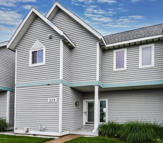 259 Shore View Way, St. Joseph, MI 49085 (MLS #19001332) :: JH Realty Partners