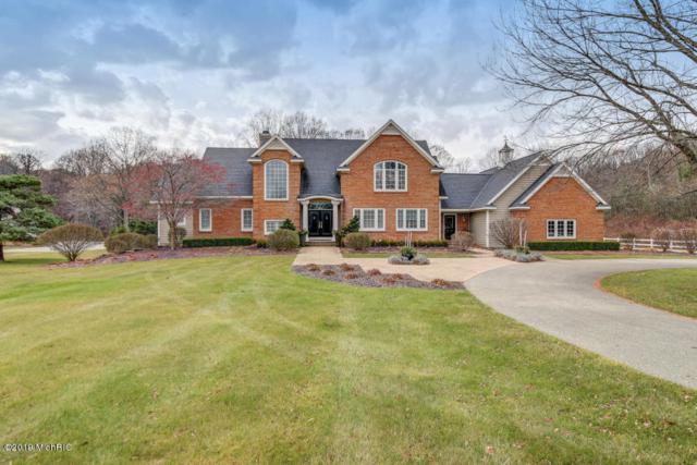 4686 66th Street, Holland, MI 49424 (MLS #19001743) :: Matt Mulder Home Selling Team