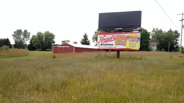 9464 Miles Road, Six Lakes, MI 48886 (MLS #19001978) :: Deb Stevenson Group - Greenridge Realty