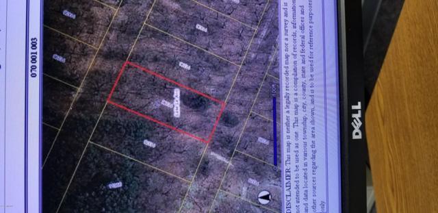 11386 Mackinac Path S, Jerome, MI 49249 (MLS #19001987) :: JH Realty Partners