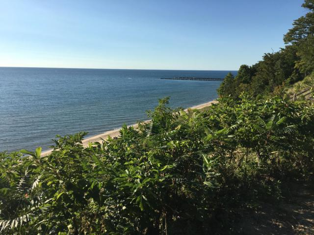 0 Colfax Street, West Olive, MI 49460 (MLS #19001994) :: JH Realty Partners