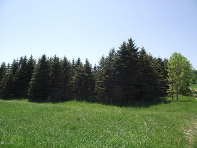 Chief Road, Bear Lake, MI 49614 (MLS #19002038) :: CENTURY 21 C. Howard