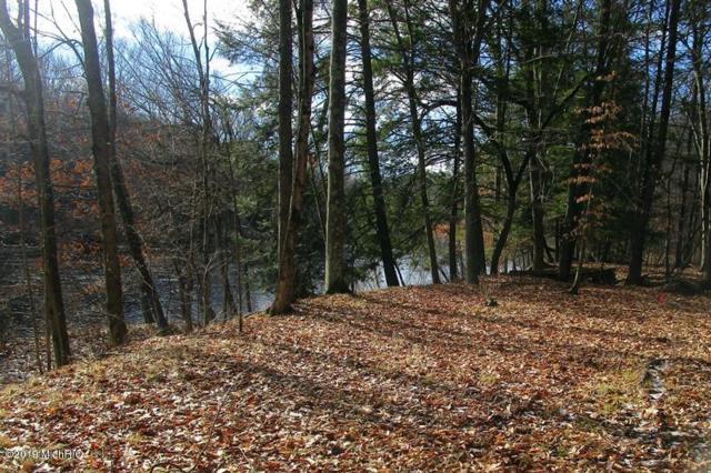 7800 S River Ridge Drive, Newaygo, MI 49337 (MLS #19002235) :: Deb Stevenson Group - Greenridge Realty
