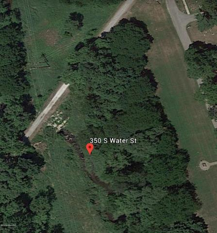 350 S Water Street, Stockbridge, MI 49285 (MLS #19002627) :: Deb Stevenson Group - Greenridge Realty